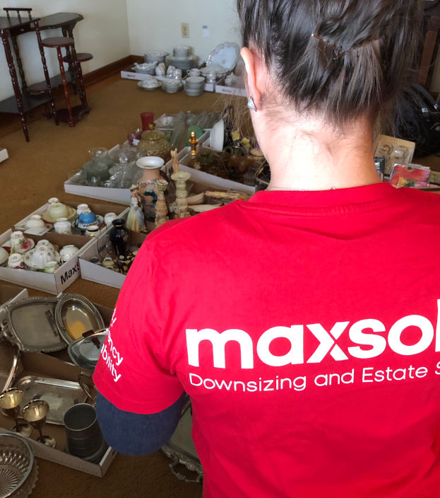 MaxSold cataloging items