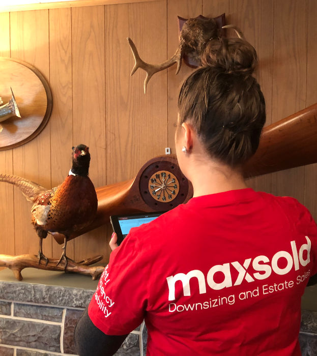 MaxSold cataloging propeller clock